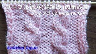 棒針編み:ケーブル編み(縄編み)の編み方:2目交差 Cable Knitting Pattern/Knitting Japan