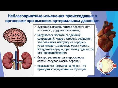 Советы мясникова по лечению гипертонии