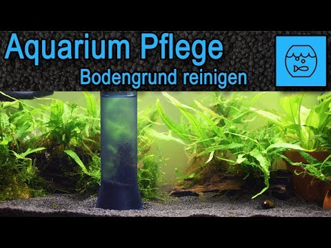 Aquarium Wasserwechsel und Bodengrund reinigen mit dem Mulmsauger - Juwel Aqua Clean 2.0 Unboxing