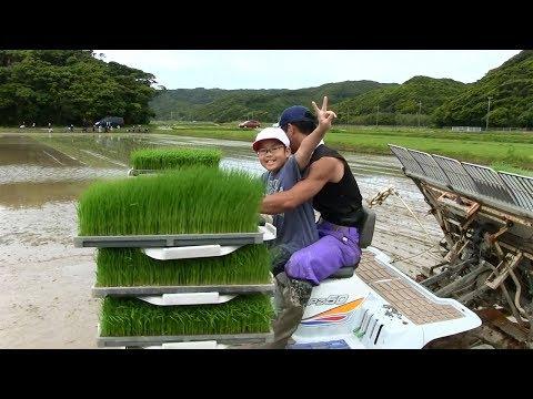 種子島の学校活動:花峰小学校田植え・田植え機試乗体験・泥んこドッジボール