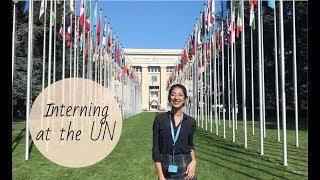 Interning at the UN thumbnail image