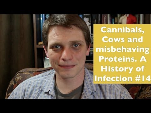 Video Cannibals, Cows, and misbehaving Proteins (Prion Diseases). A History of Infection #14