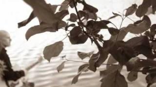 Steve Sharples - This Last Day Of My Life (Original)