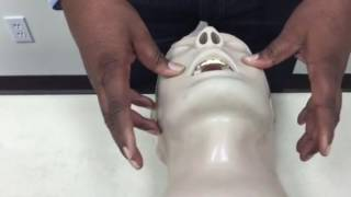 Modified Jaw Thrust