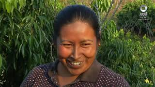 Especiales Noticias - Jalpan, un rincón de la sierra