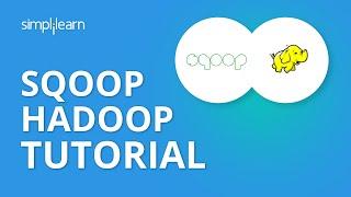 Sqoop Hadoop Tutorial | Apache Sqoop Tutorial | Sqoop Import Data From MySQL to HDFS | Simplilearn