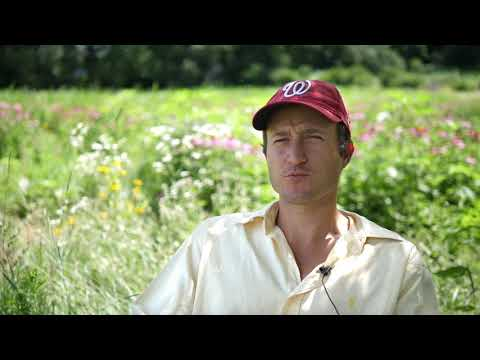 Image of Value Added Producer Grant: Sacred Blossom Farm