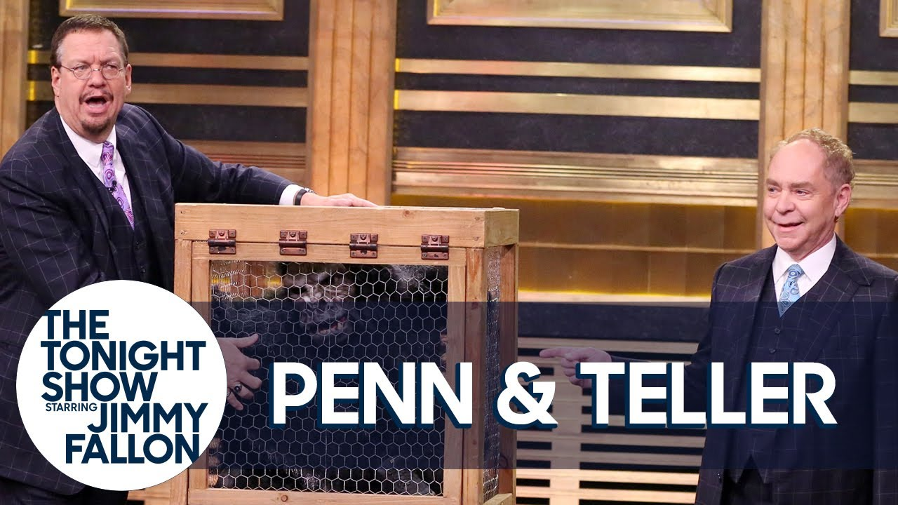 Penn & Teller Give a Lesson in Misdirection Using a Vanishing Chicken thumbnail