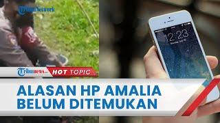 Diduga Punya Petunjuk Kuat terkait Pembunuhan di Subang, Lokasi HP Milik Amelia Masih jadi Misteri