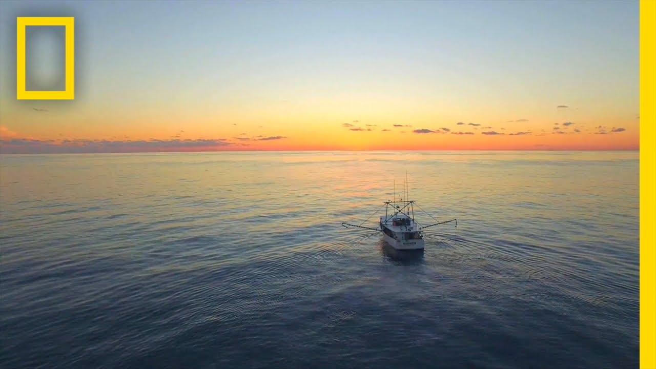 Deploying the Depth Finder | Big Fish, Texas thumbnail