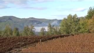 Vino i Vinogradarstvo - Jungic (Banja Luka)