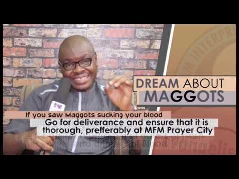 DREAM ABOUT MAGGOTS I Evangelist Joshua Orekhie I