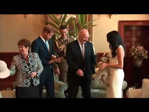 Prince Harry and his wife the former Meghan Markle received a toy kangaroo and a small pair of boots from Australia's Governor General. The news of the royal couple's pregnancy was announced after they arrived in Sydney on Monday. (Oct. 16)