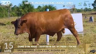 Coro 2196 b4 fiv