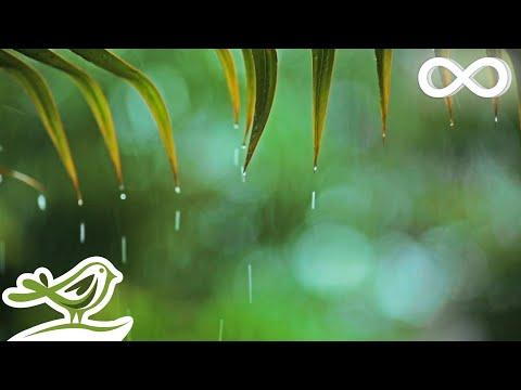 Relaxing Music & Soft Rain Sounds: Relaxing Piano Music, Sleep Music, Peaceful Music ★148🍀