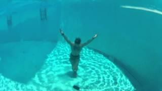 Feet First Surface Dive
