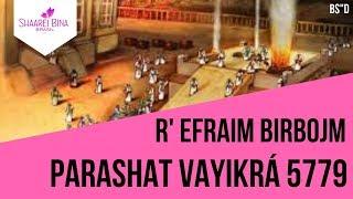 Parashá Vayikrá