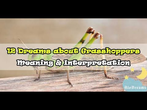 12 Dreams about Grasshoppers Meaning Interpretation