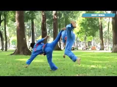 Viet Vo Dao - Dangerous Martial Art