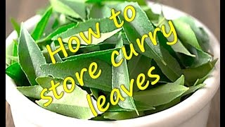How to store   freeze  Curry Leaves   RinkusRasoi