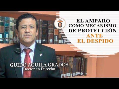 EL AMPARO COMO MECANISMO DE PROTECCIÓN ANTE EL DESPIDO - Tribuna Constitucional 104