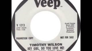 Timothy Wilson  - Hey Girl, Do You Love Me