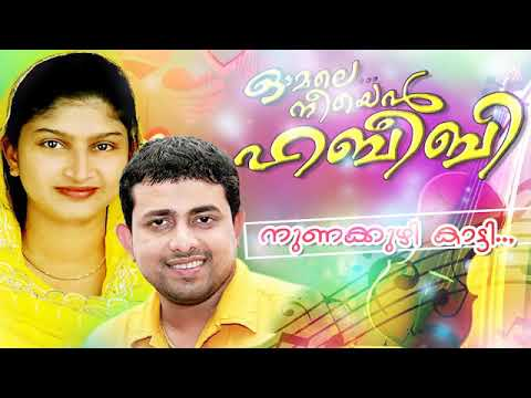 നുണക്കുഴി കാട്ടി  | Omale neeyen Habeebi | New Mappilam Album Song | Rahana | Franco