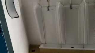 hmongbuy.net - Older Jacob Delafon urinals and Allia Paris toilet