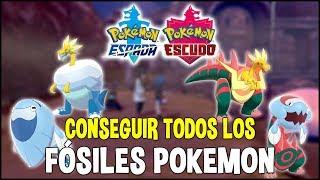 Arctozolt  - (Pokémon) - Guia de FOSILES POKEMON - Cómo conseguir y combinar TODOS los fósiles | Pokemon Espada y Escudo
