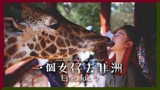 [中字] 🦒我的長頸鹿初吻💋|一個女仔去非洲 EP 7|KENYA VLOG|RedisPolly