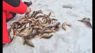 Зимняя рыбалка места в подмосковье