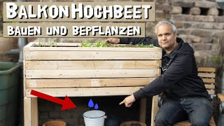 Kleines Hochbeet für Balkon und Terrasse einfach selber bauen und mit Salat und Gemüse bepflanzen