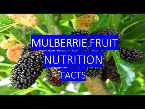 , title : 'MULBERRIES HEALTH BENEFITS AND NUTRITION FACTS