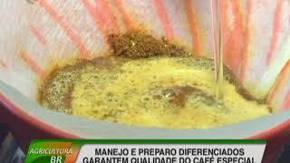 Manejo e preparo diferenciados garantem qualidade do café especial