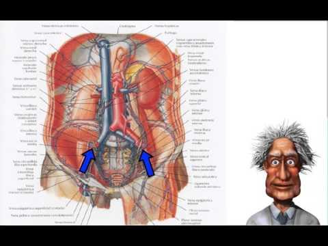 Doença sobre hipertensiva