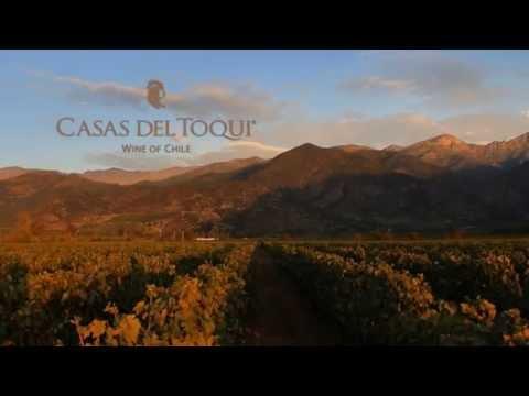 Casas del Toqui: Proef de sfeer!