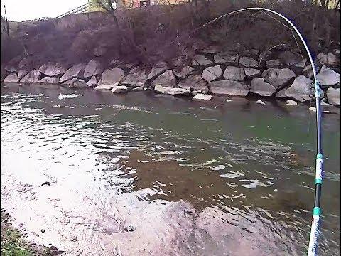 Tutti per pescare in Yaroslavl