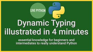 Python's Dynamic Typing Illustrated in 4 minutes: essential knowledge for writing bug-free code
