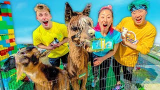 LAST TO LEAVE THE PETTING ZOO WINS $10,000!!