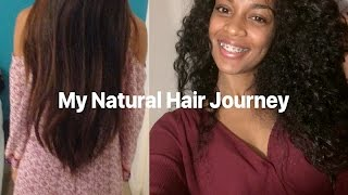Natural Hair Journey | Transitioning from Heat Damage
