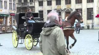 Turismo em Bruxelas despenca