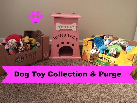 Dog Toy Collection And Purge