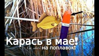 Весенняя рыбалка в мае на карася