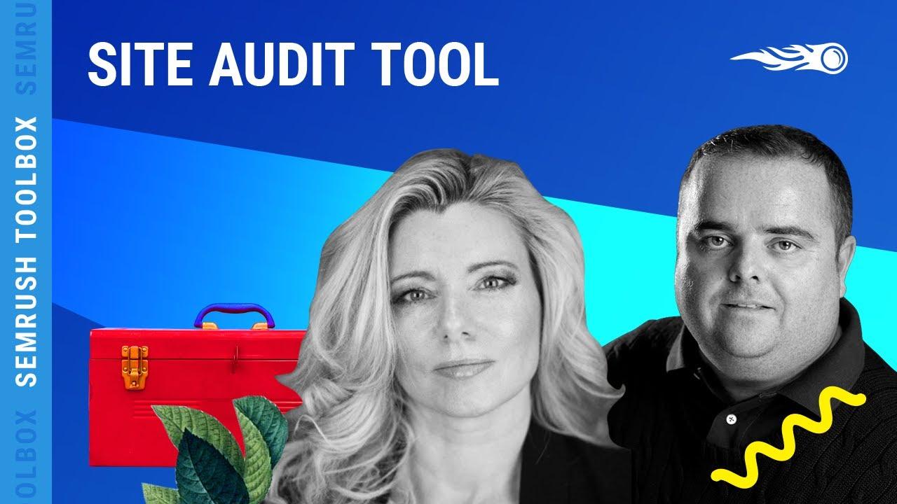 Site Audit image 1