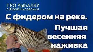 Какая рыба клюет на ручейника