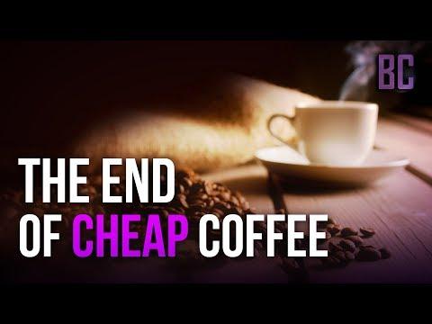 Proč by měl šálek kávy stát pět stovek