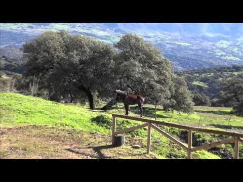Mirador Natural de El Corcho, Cortes de la Frontera