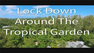 FPV Lock Down Around The Tropical Garden Apex HD Quadcopter
