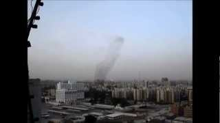 preview picture of video 'L'équipe drôle d'oiseaux - A funny team of birds (Baghdad)'