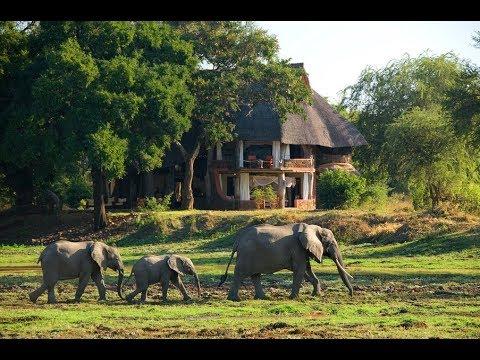 The Luangwa experience